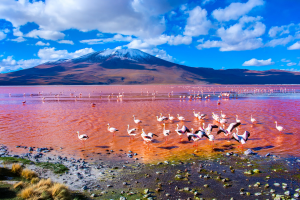 Bolivia Water Mountain View