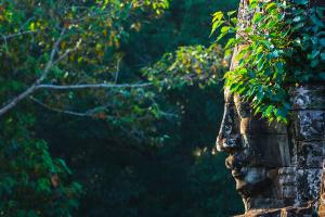 Cambodia Tree Face