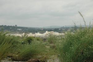 Congo-Kinshasa Grassy View
