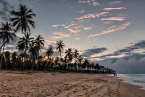 Dominican Republic Beach Tropics View