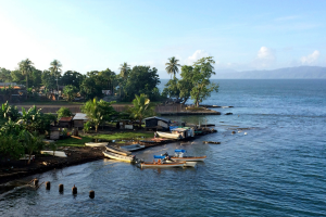 Guinea Water View