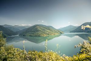 Georgia Water View
