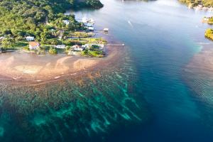 Honduras Island View