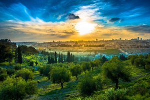 Israel Landscape View