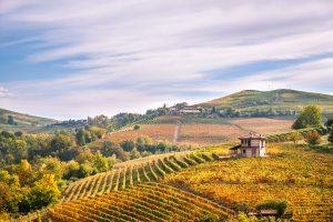 Italy Landscape View