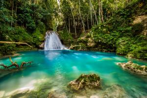 Jamaica Waterfall Pond View
