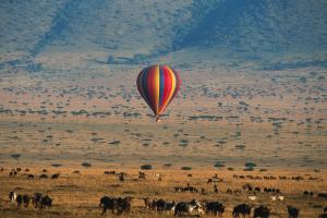 Kenya Hot Air Balloon Photo