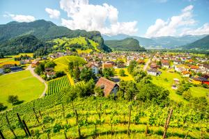 Liechtenstein City View