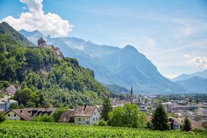 Liechtenstein Mountain View