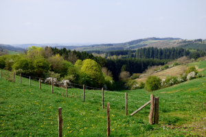 Luxembourg Landscape View