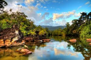 Madagascar Water View