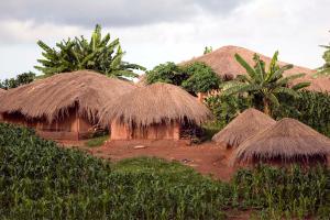 Malawi Huts