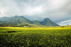 Malawi Mountain View