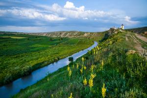 Moldova Landscape View