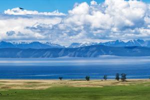 Mongolia Mountain View