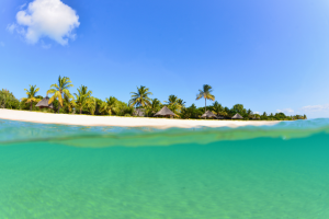 Mozambique Beach with Ocean