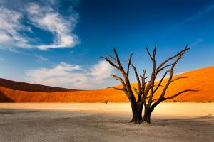 Namibia Desert View 1