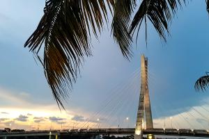 Nigeria Bridge with Palm Tree