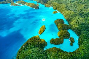 Palau Close-Up Water Island View