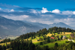 Poland Landscape View
