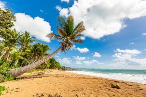 Puerto Rico Beach View