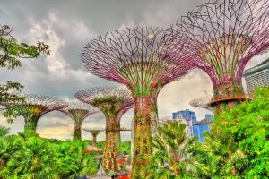 Singapore Garden View