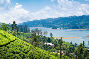 Sri Lanka Hill View