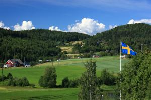 Sweden Landscape View
