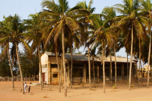 Togo House with Palm Trees