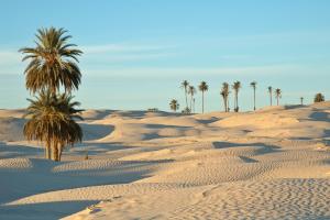 Tunisia Sand Desert