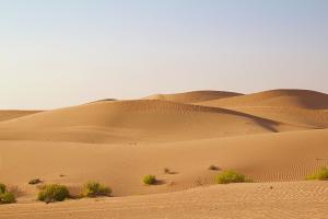 United Arab Emirates Desert View