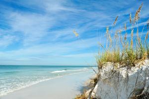 United States Beach View