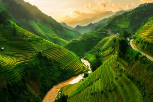 Vietnam Landscape Mountain View