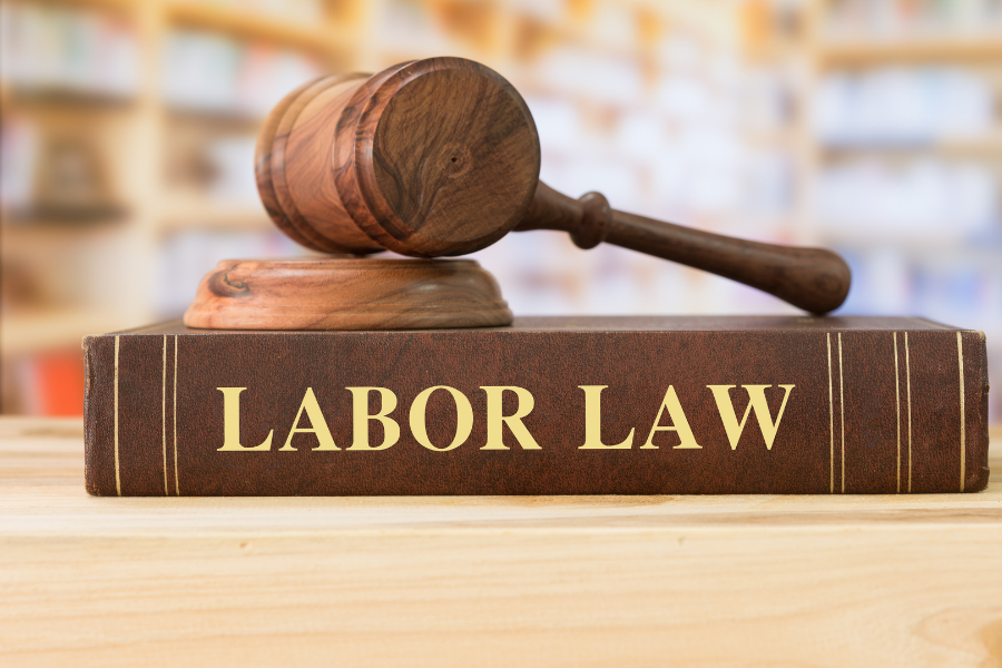 Labor Law Book in Court