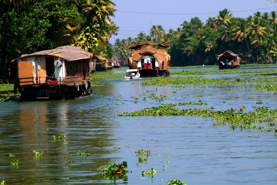 India Water Hut
